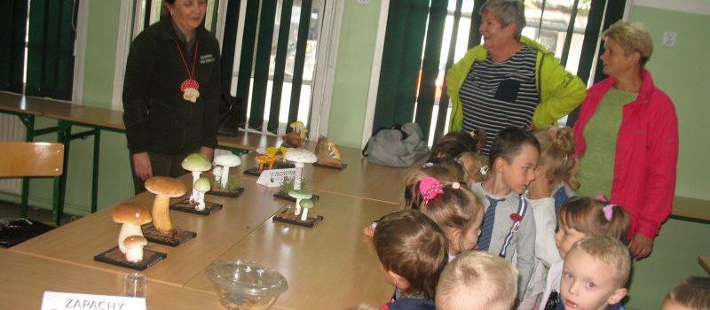 Poznajemy grzyby Puszczy Białowieskiej
