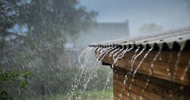 Deszcz potrzebny od zaraz