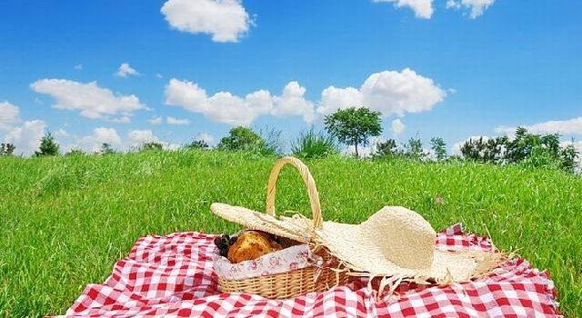 Nieudany piknik