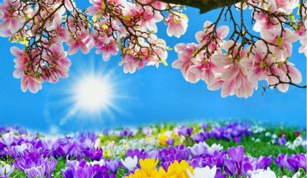 W poszukiwaniu wiosny- bajka